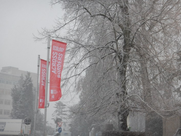A snowy welcome to the conference