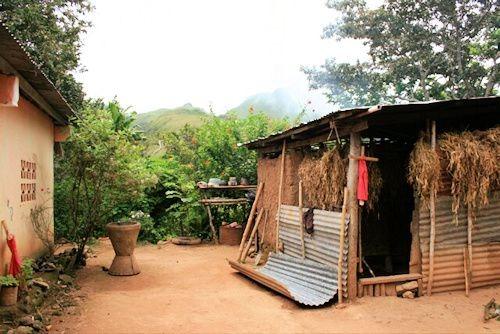 Maria's Tiny House