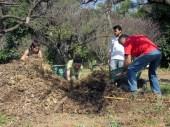 Juntando compost para aplicar en el sitio del bosque comestible en la QuintaEsencia - Curso de Certificación en Diseño de Permacultura