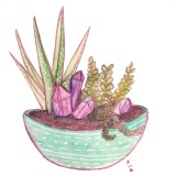 succulents and crystals. Watercolor and colored pencil