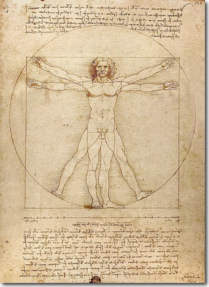 Vitruvian_Man_Leonardo_da_Vinci___49596.1500402662