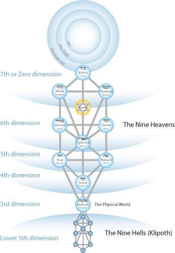tree-of-life-dimensions-color-2
