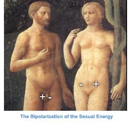 bipolsex
