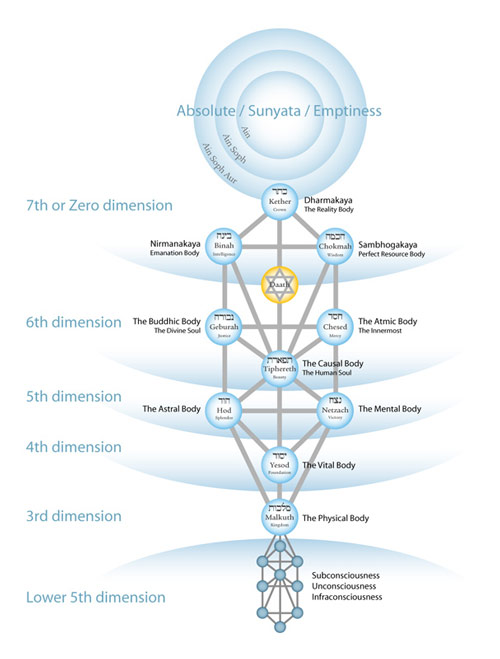 tree-of-life-twelve-bodies-s