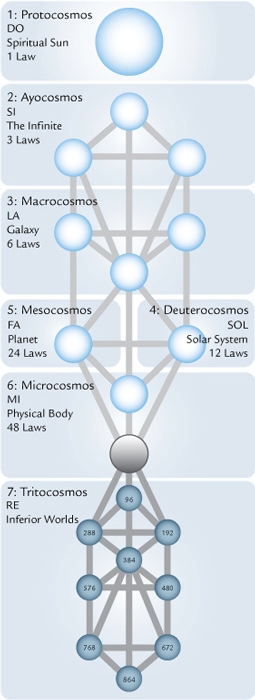tree-cosmos-laws-sun-_fmt1
