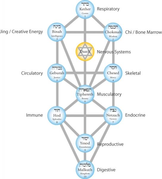 tree-of-life-energies