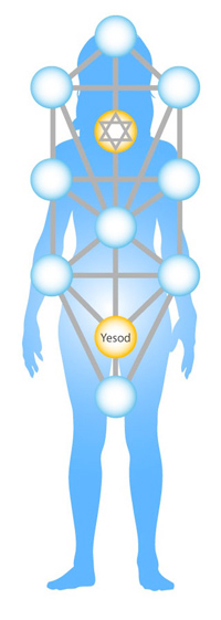 yesod-body-cropped