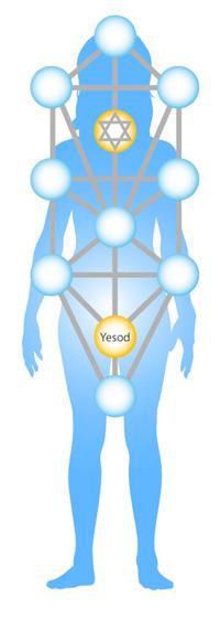 yesod-body-cropped