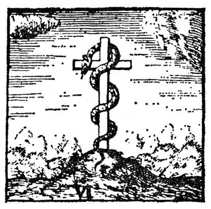 Cross and serpent
