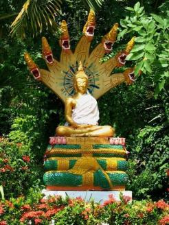 570978-Buddha-and-Mucalinda-1