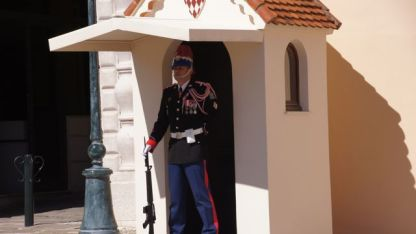 Guard at Palace