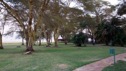 The grounds at Amboseli/Ol Tukai