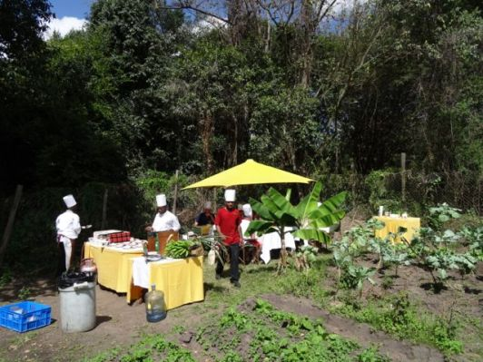Great setting for a cooking class