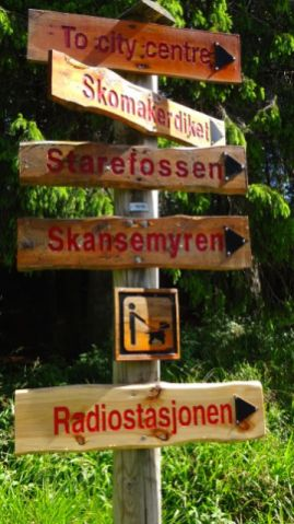 Now, which way should I go