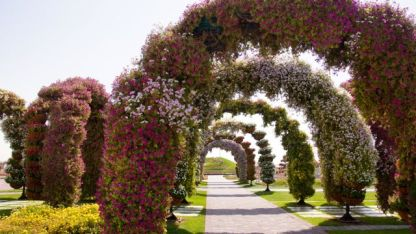 Dubai Magical Gardens