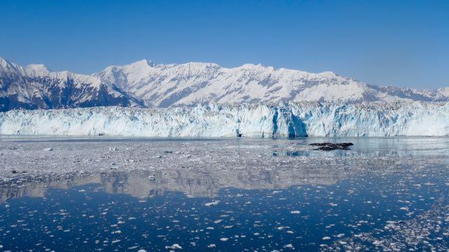 150521 Yakutat Bay