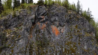 Lichen growing on side of cliff face.