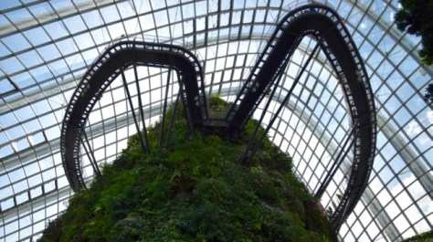 Walkways around Forest Dome