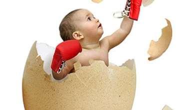 Photo of أهمية البيض للأطفال