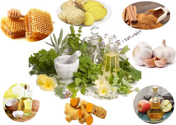 Photo of مضاد حيوى طبيعى فى مطبخك