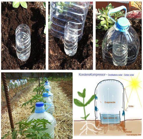 إعادة تدوير الزجاجات البلاستيك وتحويلها إلى حديقة