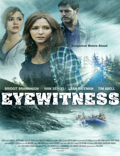 Poster de Eyewitness (Testigo presencial)