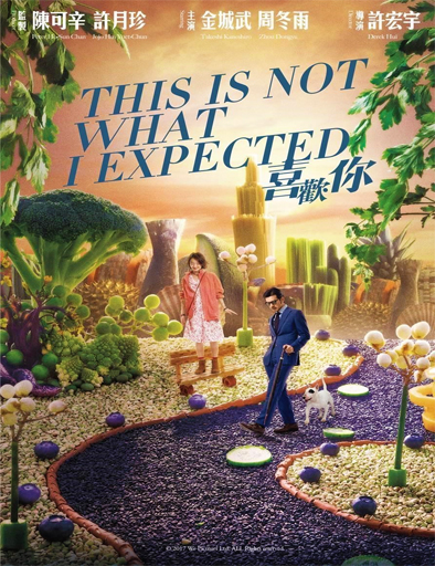 Poster de This Is Not What I Expected