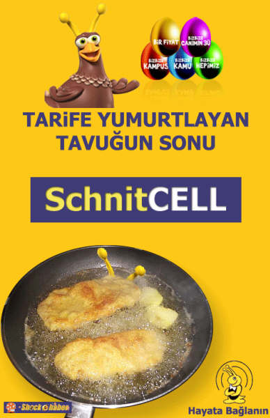 SchnitCELL