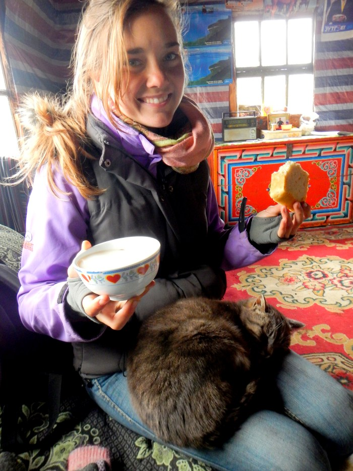 While horse trekking the countryside, we would often stop when we passed by someone's home. It is Mongolian custom to always offer hospitality to travelers, so we would stop and have bread and tea.