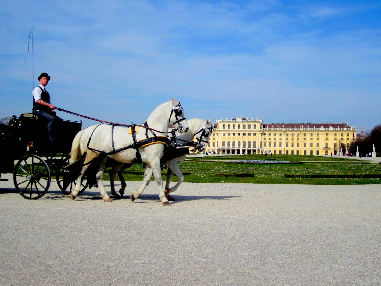 Schönbrunn Palace in Vienna Austria