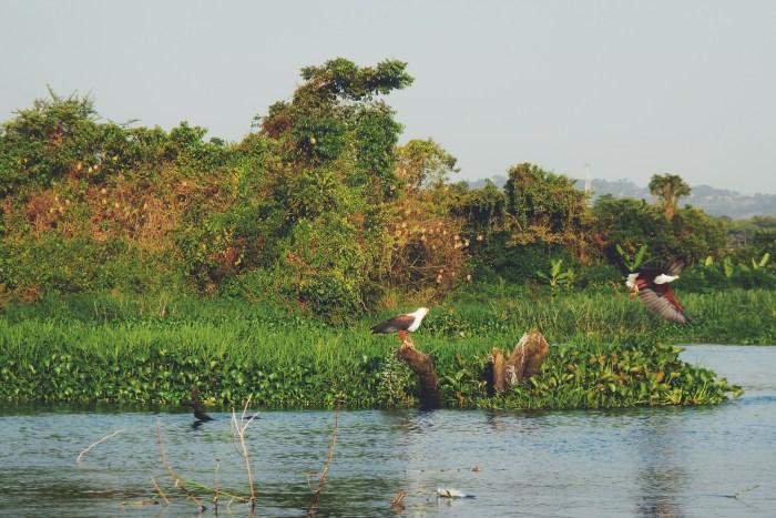 Jinja, Uganda- the mouth of the Nile