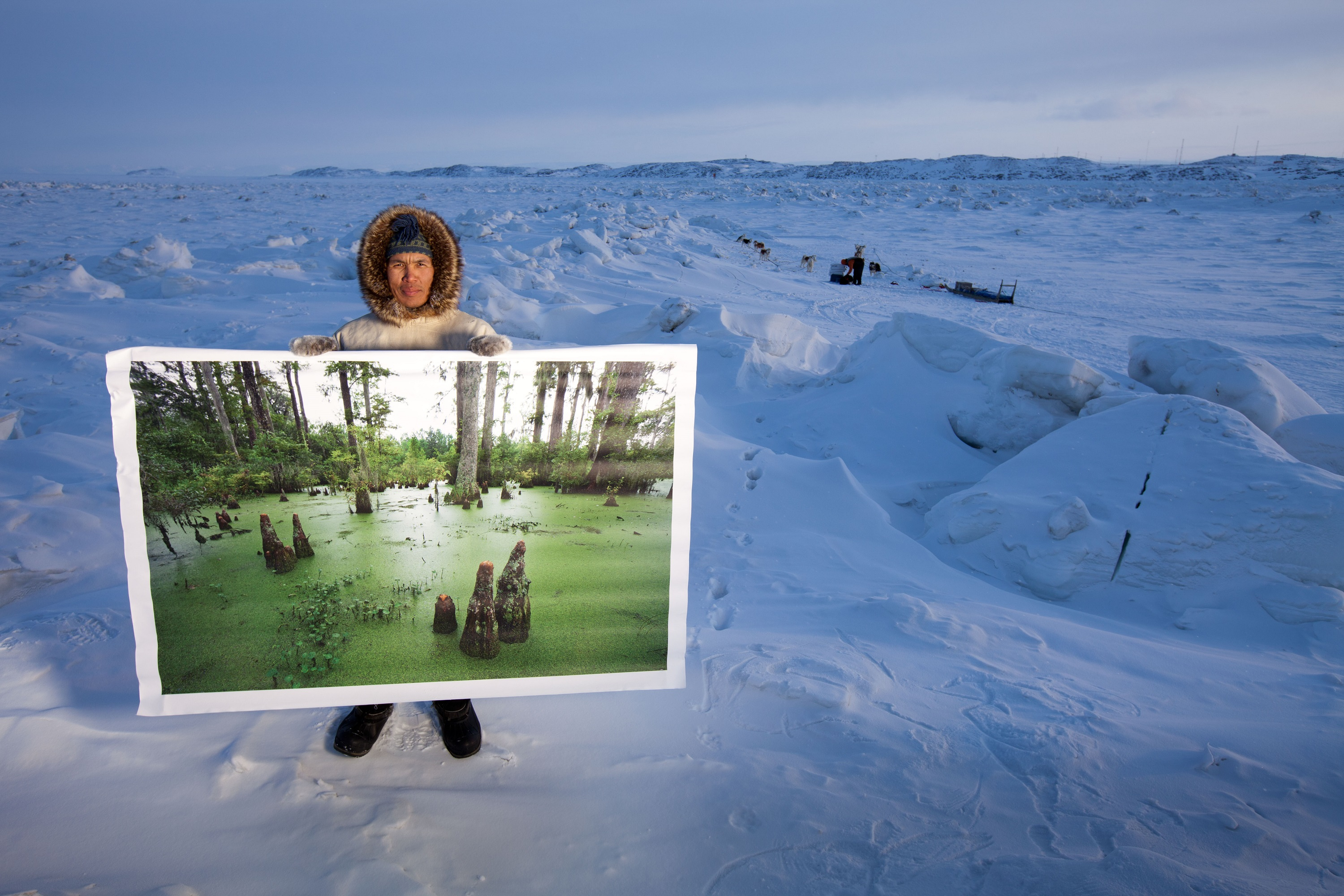 Man in snowy Arctic with painting of green ancient ecosystem