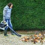 Blower Rental | Rent Leaf Blower - Effingham Builders Supply Rental Center