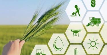 digitális_agrárstratégia