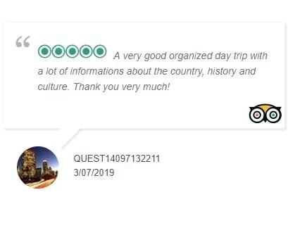 TripAdvisor Review 5