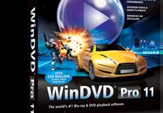 Win DVD Software