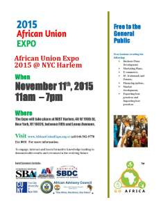 African Union Expo 2015 at Mist Harlem on 11/17/2015
