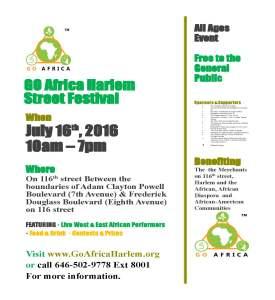 GO Africa Harlem Street Festival public 8-19-2015