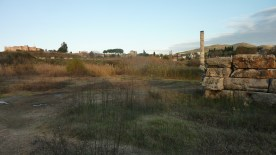 Temple of Artemis, one of the 7 Wonders of the Ancient World