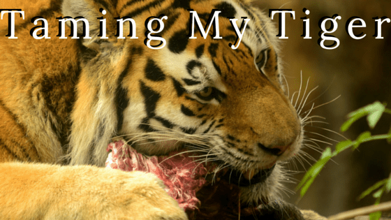 Taming My Tiger - 3 Keys to Change Your Habits