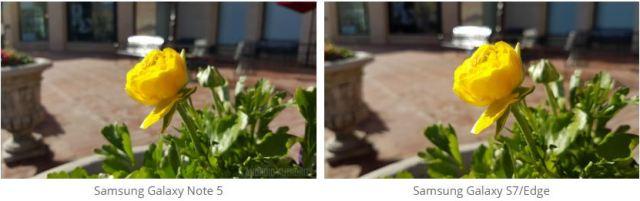 Samsung Galaxy S7 vs Note 5 camera Image 2