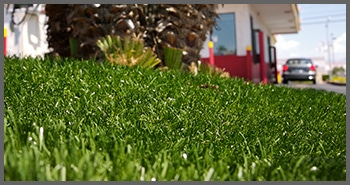 Artificial lawn at office building