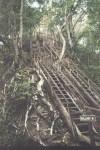 Travel Video – Tikal
