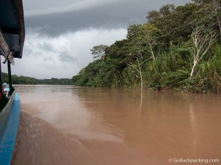 Jaguars and Thunderstorms on the Tambopata River