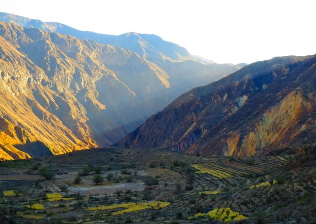 One of the best hikes I've ever made happened at Colca Canyon