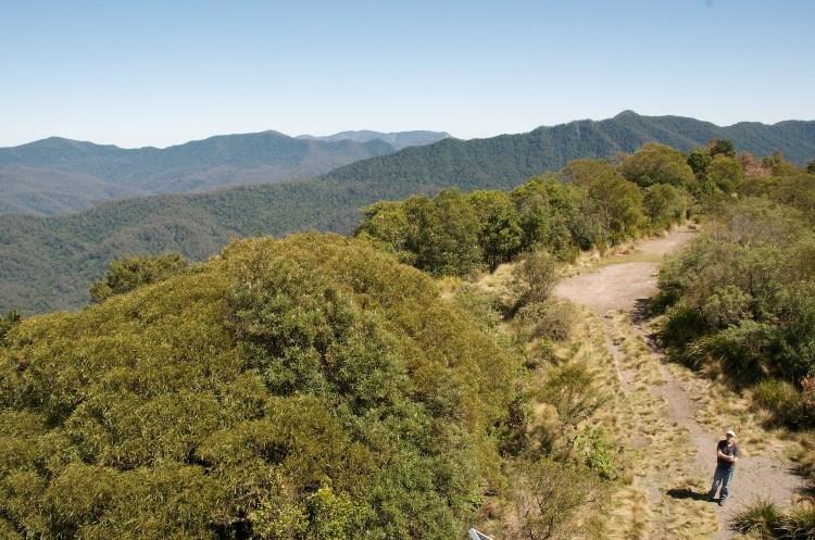 Barrington Tops National Park (Credit: Nomad Tales)