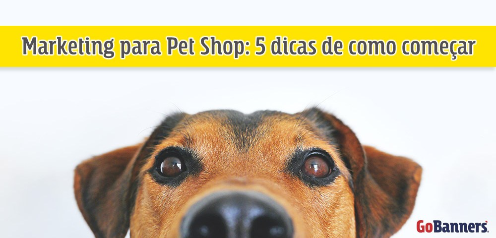Marketing-para-Pet-Shop