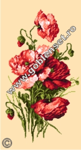 produse d719f82793fb147543162531cc7b9835