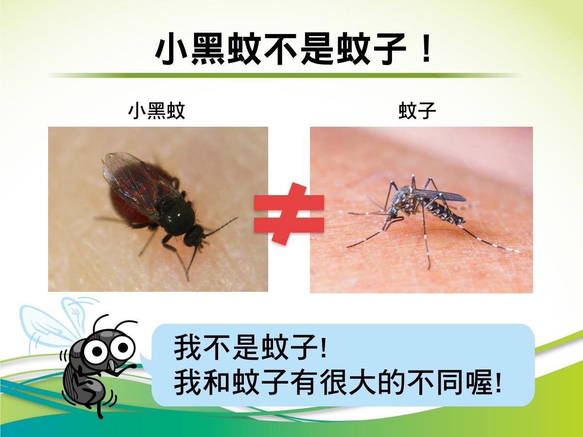 [露營瘋新聞] 知己知彼 對抗小黑蚊大作戰 – 露營瘋粉絲團