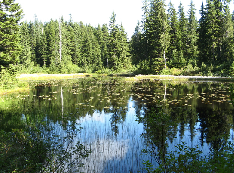 Indian lake state park campground. Mount Seymour Go Camping Bc